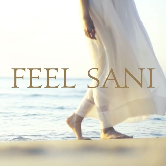 corporate video for sani